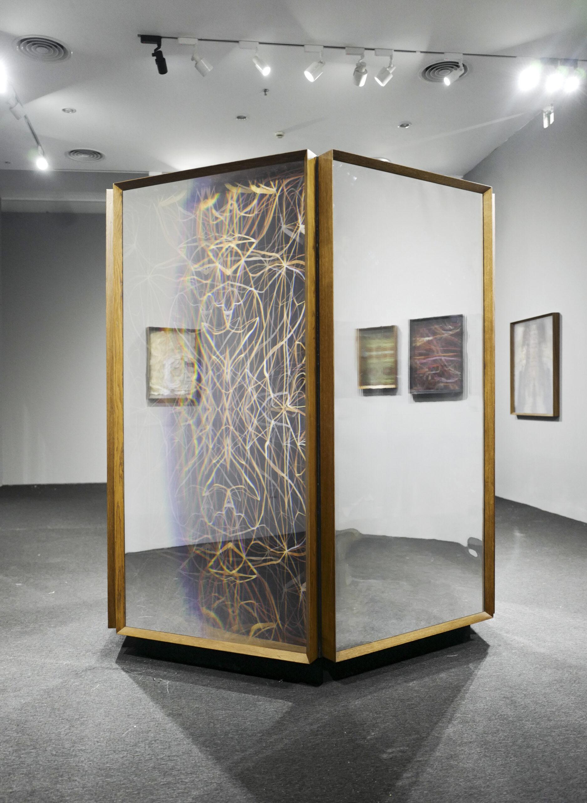 Maurizio Donzelli Shenzhen Biennale