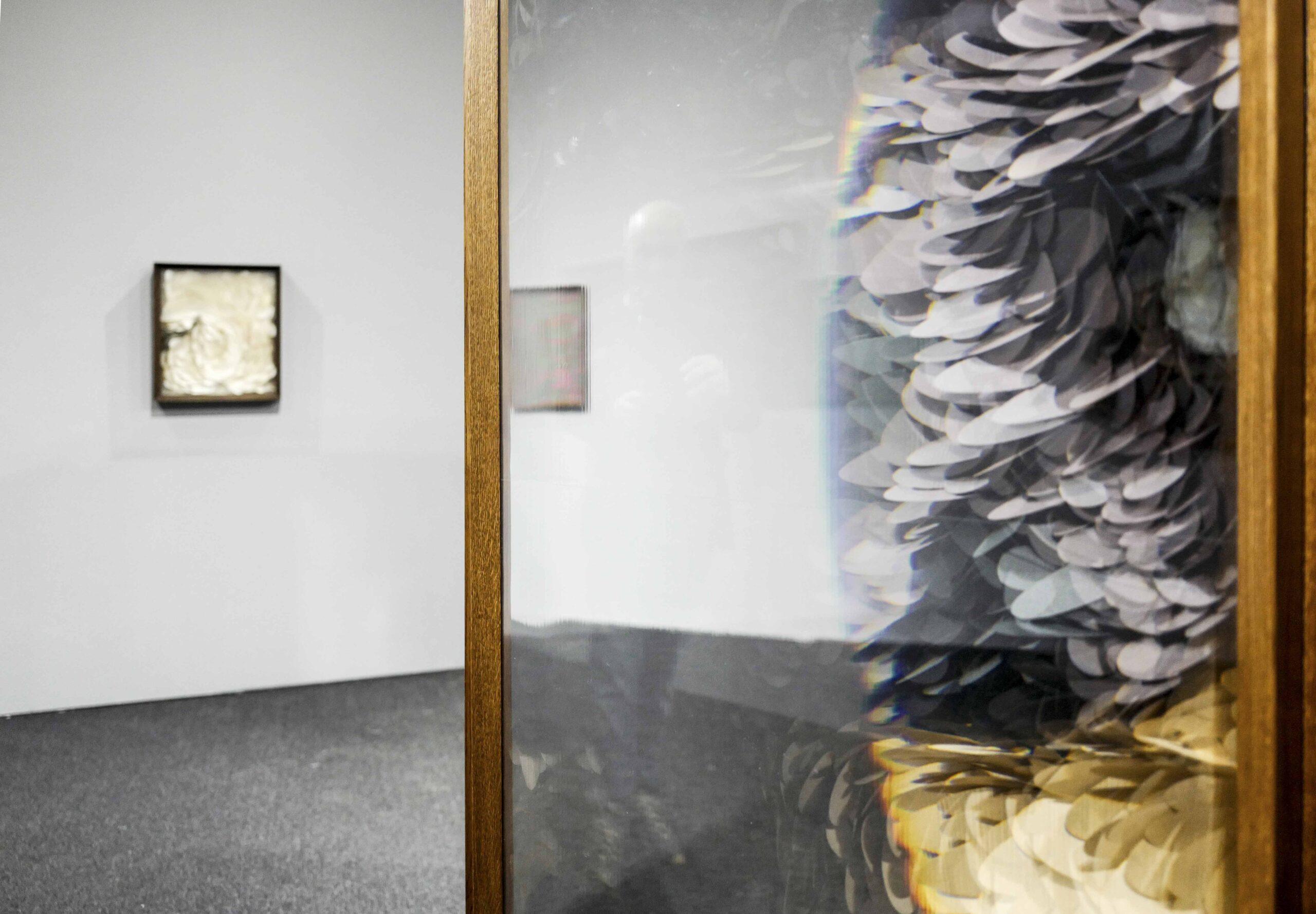 Maurizio Donzelli Shenzhen Biennale 2018